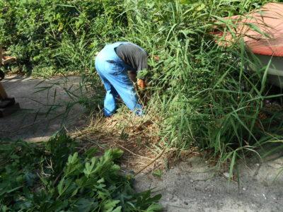 Ekološka radna akcija ŠRD INA Kostrena